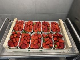 Sorbetti aus frischem Obst